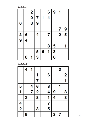 The Gift Of Sudoku Puzzle Book